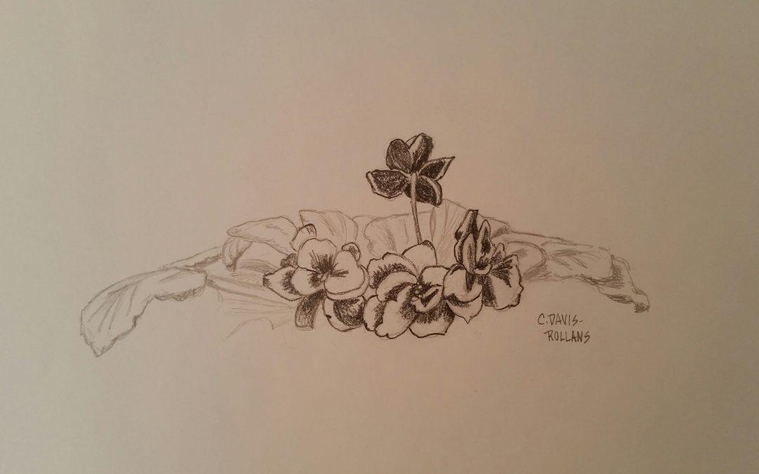 African Violets (Flower Study #5)