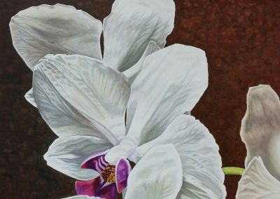 White Orchid #2
